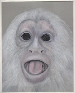 Primate 10