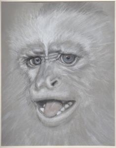 Primate 12
