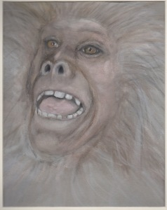 Primate 13