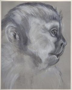 Primate 16