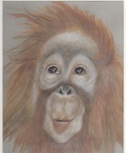 Primate 3