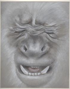 Primate 6